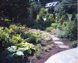 landscaping-ideas-problem-areas-addressed