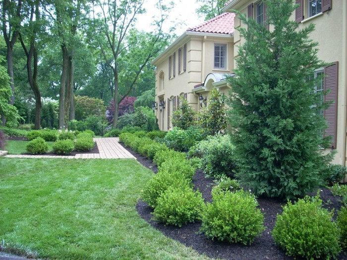 Formal garden with boxwood parterre