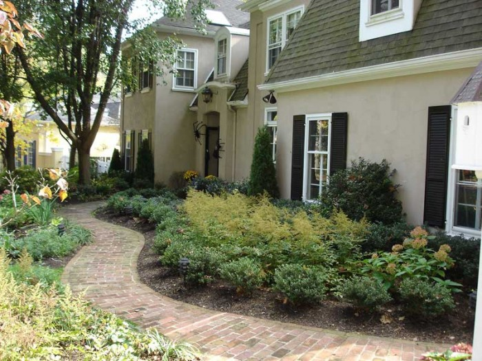 Garden with evergreen shrubs and perennials in Frazer