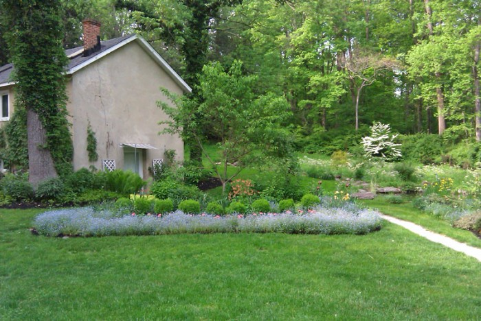 Backyard Landscaping Ideas - Woodland Setting With Perennials in Edgemont