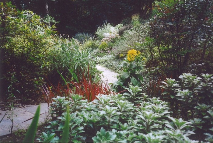 Landscaping Ideas - Hillside Planting with Flagstone Walk in Bryn Mawr