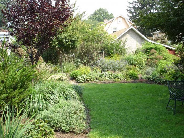 Natural Landscape with grasses and perennials in Ardmore