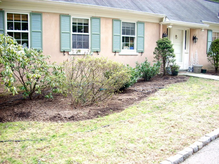 Landscaping Ideas - Williamsburg Style Garden in Bryn Mawr - Before