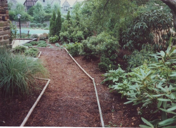 Backyard Designs - Japanese Garden in Wynnewood - After